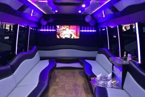29 Passenger Limousine